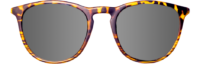 RONT YELLOW TORTOISE SILVER